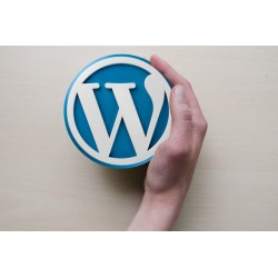 WORDPRESS: UN SITO WEB DA PROFESSIONISTA